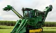Dự án đầu tư máy thu hoạch mía: Cơ giới hóa thu hoạch mía